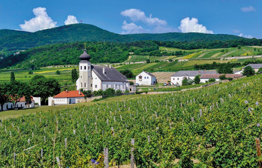 Geheimtipps für Alpen- und Weinfans