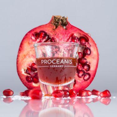 10% Rabatt auf www.proceanis.com