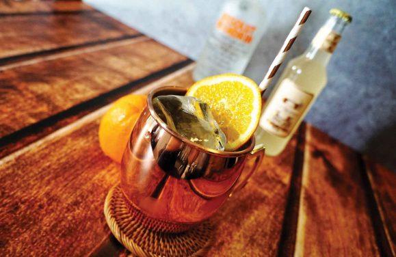 Gin – ein Heilmittel
